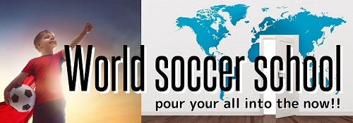 World soccer school